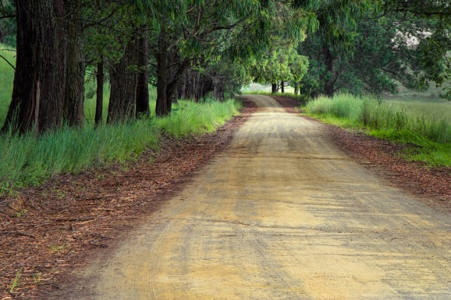 road-1894938_960_720